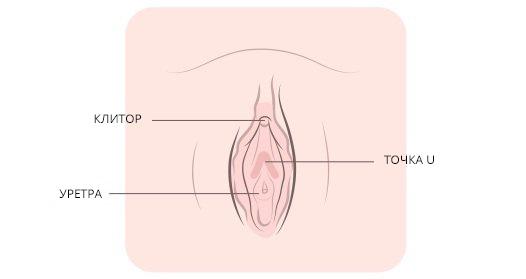 Шерон, как делается мастурбация клитора фото