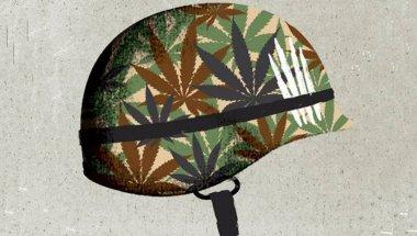 Марихуана и подагра марихуана ногано