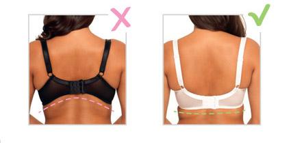 Инструкция  как правильно выбрать бюстгальтер и носить его без пытки b654ec226b462